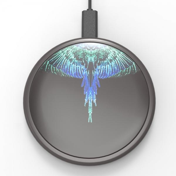 1391527Wireless_Wings_Blue.jpg